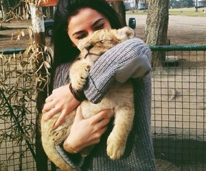 girl, cute, and lion image