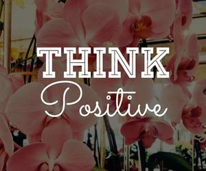 flower, pink, and positive image