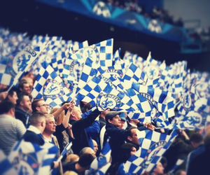 Chelsea, Chelsea FC, and fans image