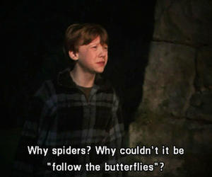 spider, harry potter, and ron image