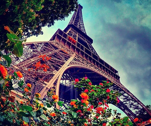 paris and flowers image