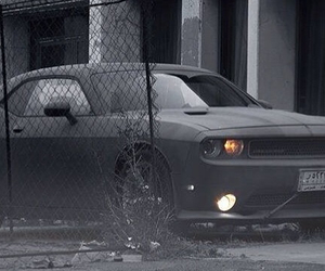Challenger, dodge, and muscle car image