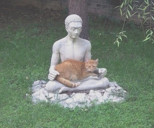 cat, statue, and funny image