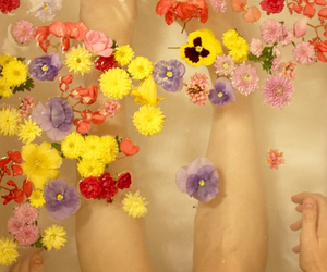 beautiful, floral, and lovely image