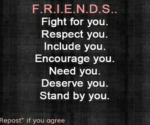 friends, quote, and respect image