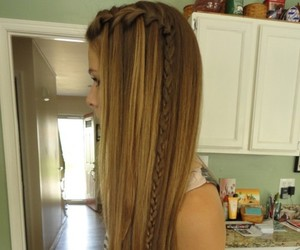 hair, braid, and long hair image