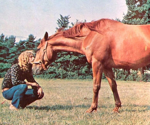 robert plant, led zeppelin, and horse image