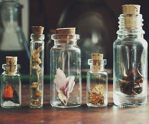 jars and hipster image