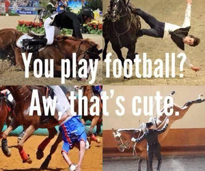 dressage, love, and football image
