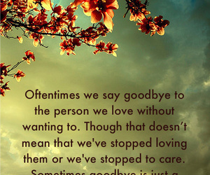 quote, love, and goodbye image