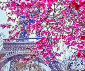 beautiful, photo, and france image