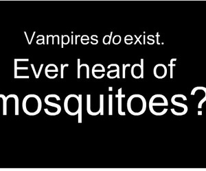 lol, mosquito, and twilight image