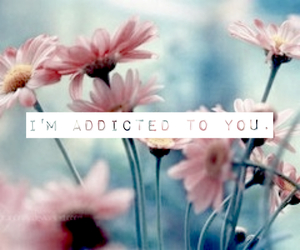 addicted, cute stuff, and flowers image