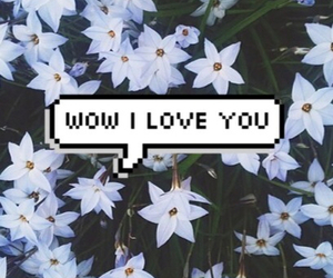love, wow, and flowers image