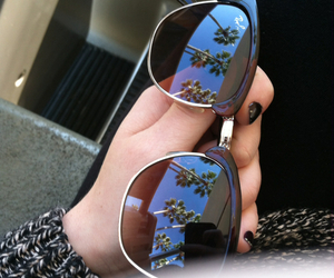 sunglasses, summer, and palm trees image