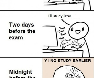 exam, funny, and study image