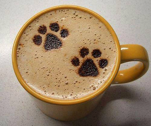 coffee, dog, and paws image