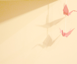 pink, shadow, and bird image