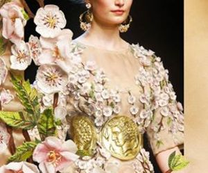 D&G, dolce and gabbana, and french image