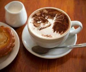 cat, cute, and coffe image