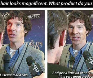 hair, benedict cumberbatch, and funny image