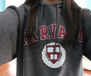 harvard, quality, and sweater image