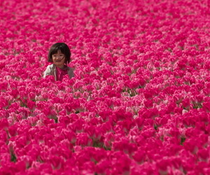 asian, flowers, and child image