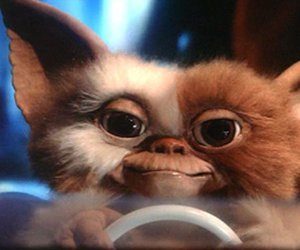 gizmo and gremlins image