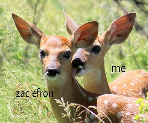 zac efron, Hot, and me image