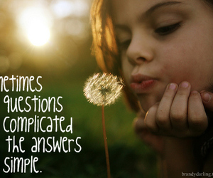 answers, dandelion, and simple image