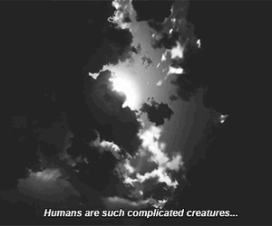 quotes, humans, and complicated image