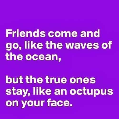 friendship, funny, and life image