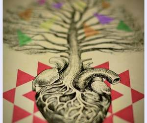 anatomy, art, and heart image