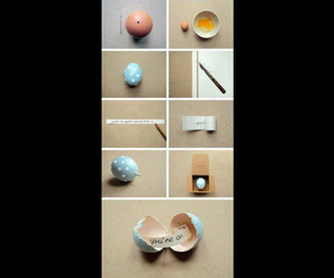 diy, eggs, and ideas image