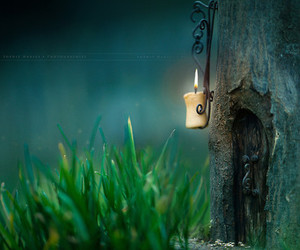 candle, magic, and tree image