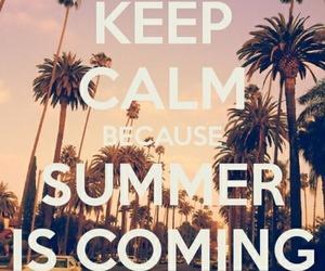 summer, keep calm, and sun image