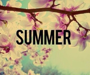 summer, flowers, and beautiful image