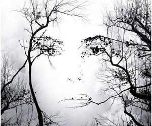 face and tree image