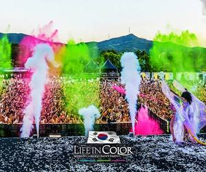 festlife and life in color image