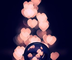 hearts, heart, and photography image