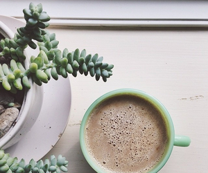 coffee, green, and plants image