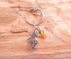seahorse, captive bead ring, and cbr image