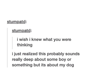 deep, haha, and dog image
