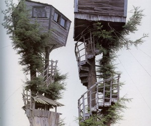 tree house, house, and tree image