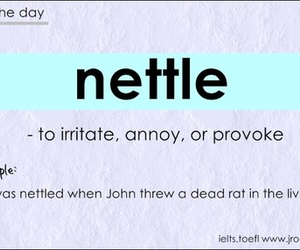 nettle, word of the day, and ielts vocabulary image