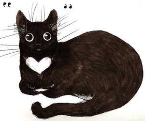 cat, heart, and black image