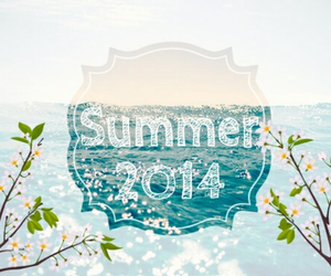 summer, 2014, and sea image