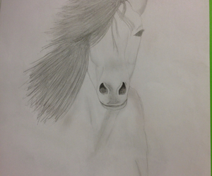 horse and painting image