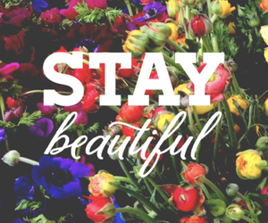 beautiful, flowers, and stay image