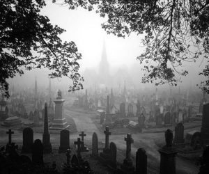 cemetery, black and white, and dead image